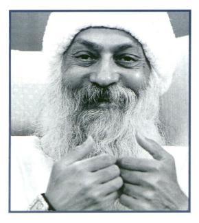 bodhidharma essay